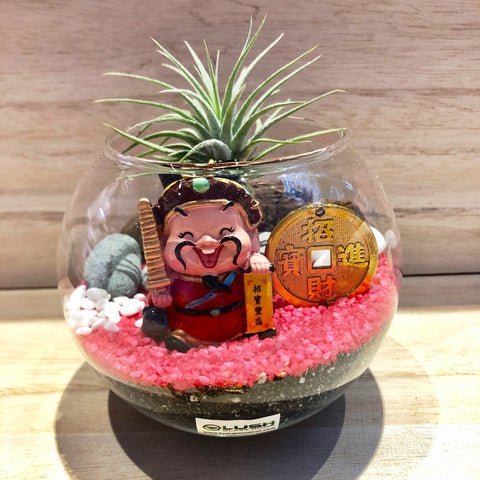 Cute Ceri Auspicious Airplant Terrarium by Lush Glass Door Singapore