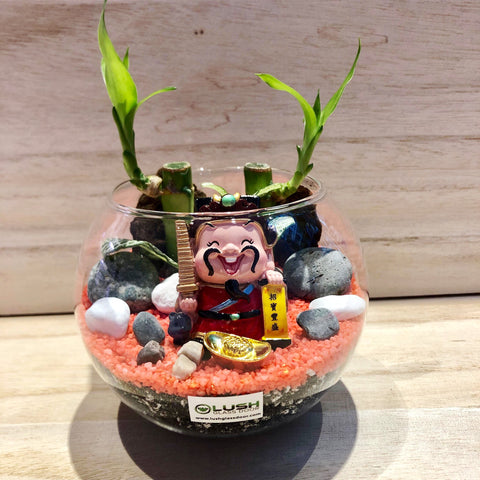 Miles Auspicious Lucky Bamboo Terrarium by Lush Glass Door Singapore