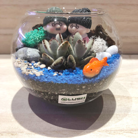 Ted Succulent Terrarium in Small Round Bowl by Lush Glass Door Singapore