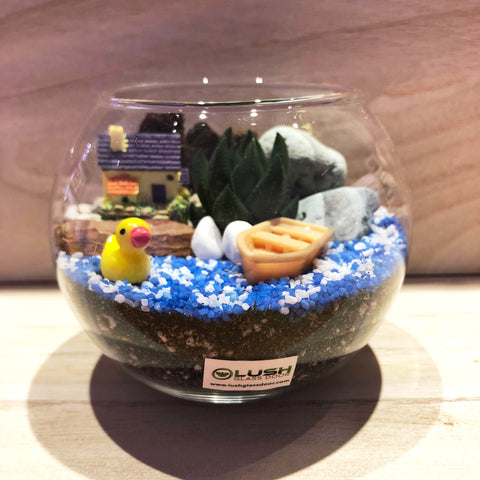 Customized Devlin Succulent Terrarium in Small Round Bowl by Lush Glass Door Singapore