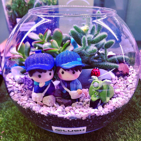 Customized 2 Sided Tamika Succulent Bowl Terrarium by Lush Glass Door Singapore