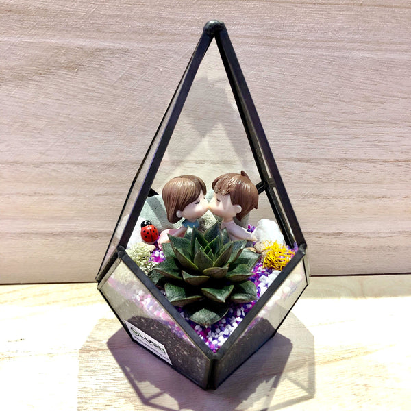 Delaney Succulent Arrangement in Teardrop Geometric Terrarium by Lush Glass Door
