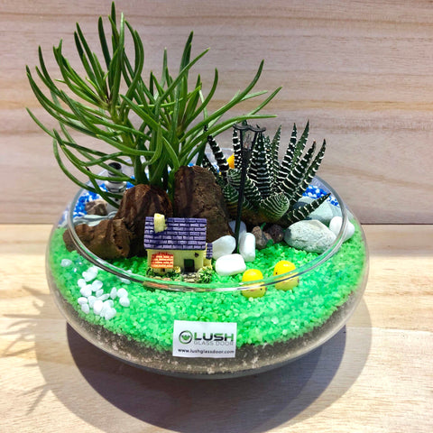 Customized 2 Sided Nellie Succulents Arrangement Mid Range Terrarium by Lush Glass Door Singapore