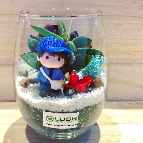 Customized Carlo Succulent Terrarium by Lush Glass Door Singapore