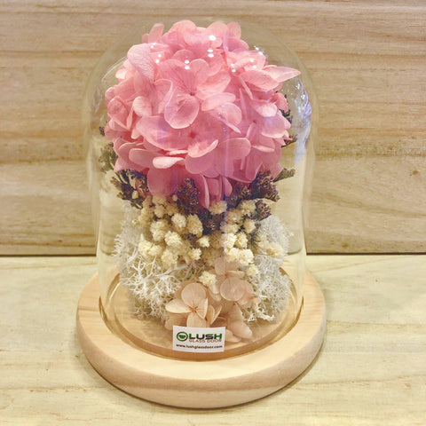 Pure Love Preserved Hydrangea Tree in Dome Glass