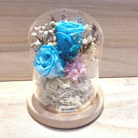 Lacee Eternal Rose Preserved Flower Glass Dome