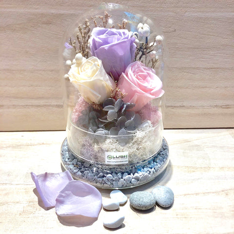 Fae Eternal Rose Preserved Flower Glass Dome
