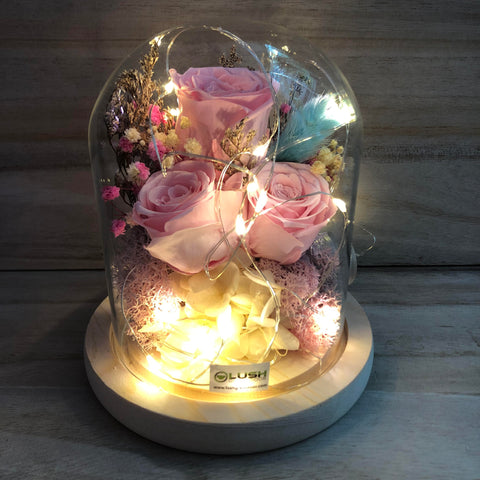 Vanessa Eternal Rose Preserved Flower Glass Dome (Fairy Light)