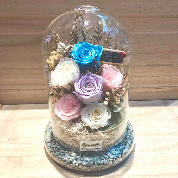 Larissa Eternal Rose Preserved Flower Glass Dome (L)
