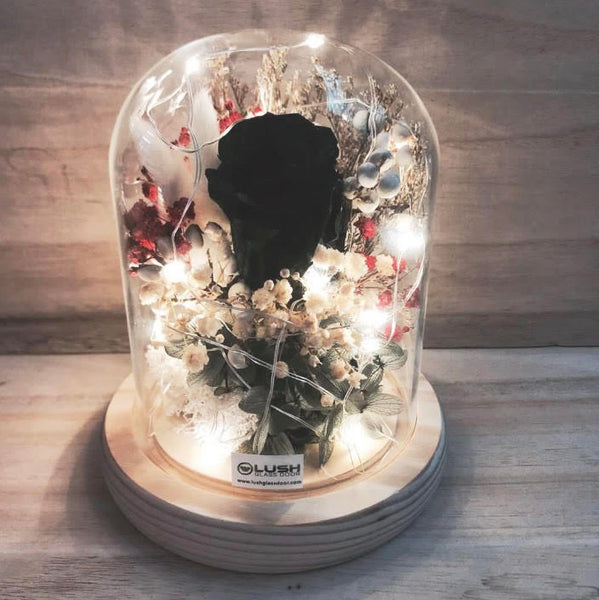 Center of Attraction Eternal Black Rose Preserved Flower Glass Dome (Fairy Light)