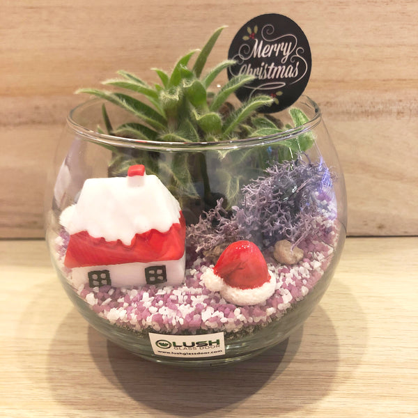 It's Beginning to Look Like Christmas Succulent Terrarium