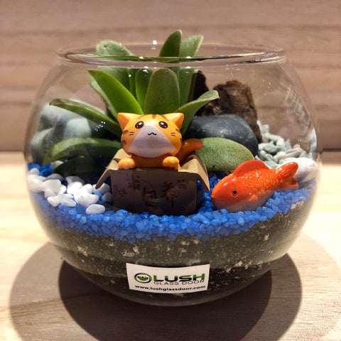 Customized Finnian Succulent Terrarium in Small Round Bowl by Lush Glass Door Singapore