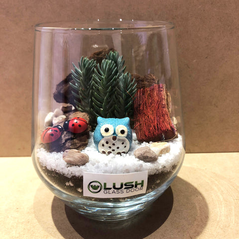 Customized Edward Succulent Terrarium by Lush Glass Door Singapore