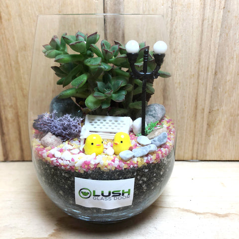 Customized Rhett Succulent Terrarium by Lush Glass Door Singapore