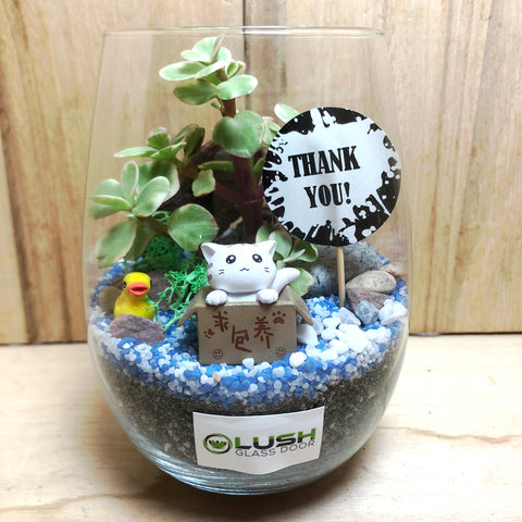 Customized Russell Succulent Terrarium by Lush Glass Door Singapore