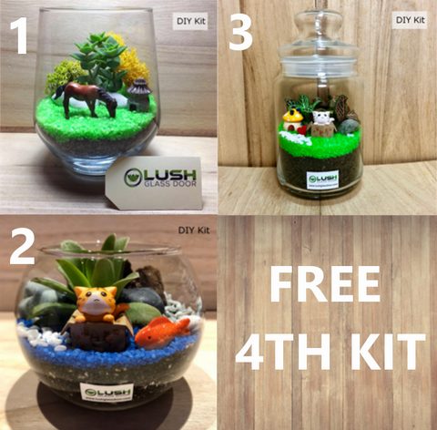 Buy 3 Get 1 Free! Stay Home Terrarium DIY Kits!