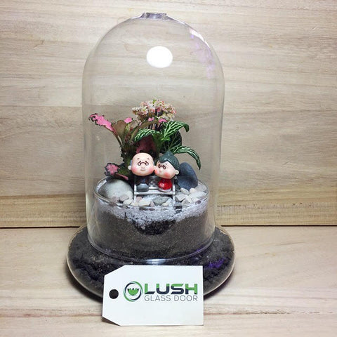 Customized Blissful Old Couple Themed Fittonia Dome Terrarium by Lush Glass Door Singapore