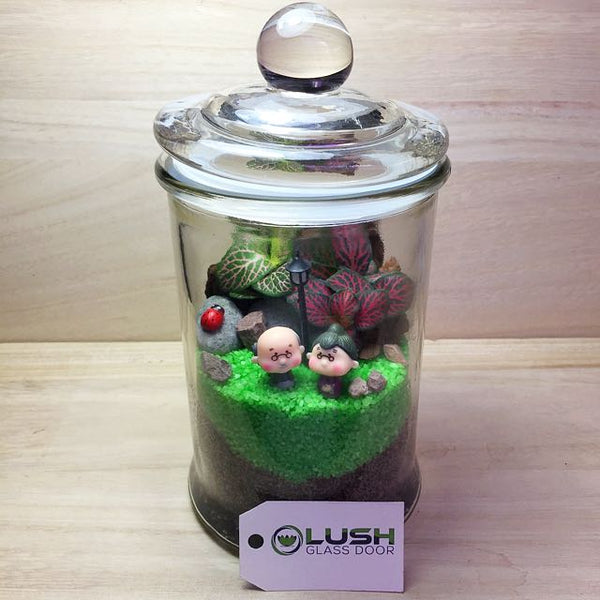 Customized Edsel Fittonia Story Jar Terrarium by Lush Glass Door Singapore