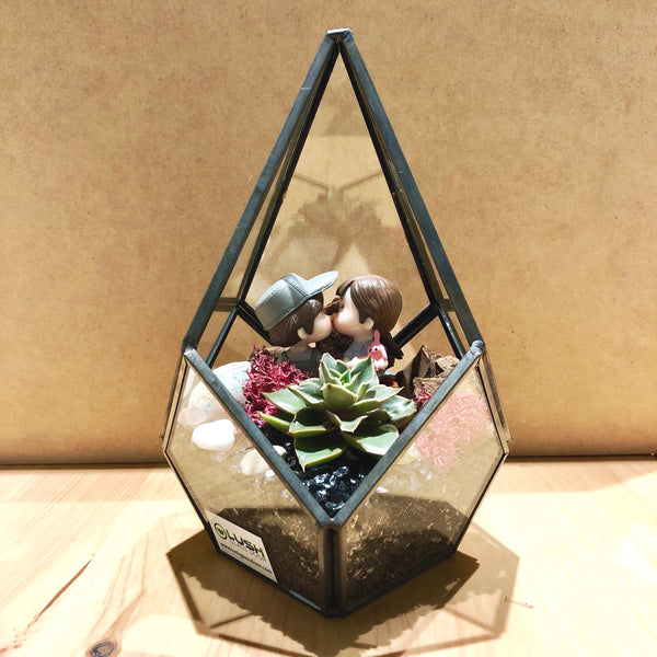 Desirée Succulents Arrangement in Teardrop Geometric Terrarium
