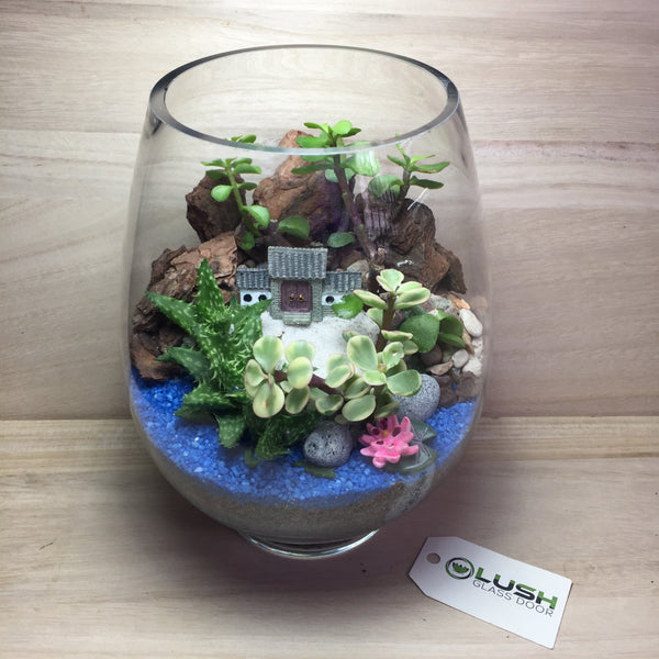 Customized Serene Scenic Succulents Terrarium by Lush Glass Door Singapore
