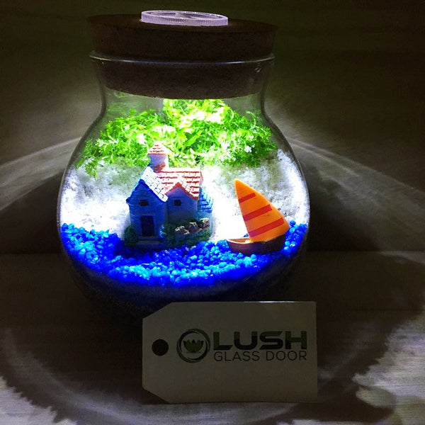 Customized Seaside Themed Moss Terrarium with Light by Lush Glass Door Singapore