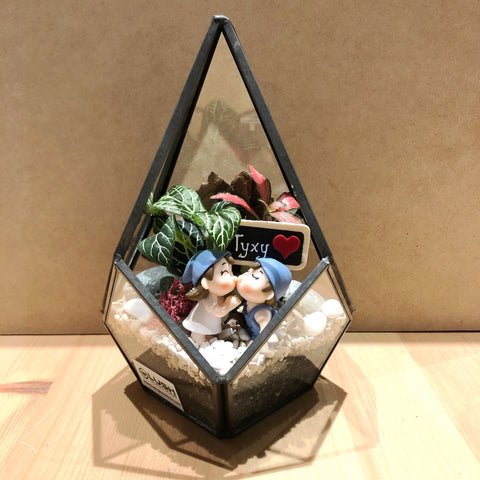 Mathias Fittonia Arrangement in Teardrop Geometric Terrarium