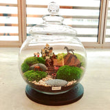 Customized Vitality Themed Moss Terrarium Centerpiece by Lush Glass Door Singapore
