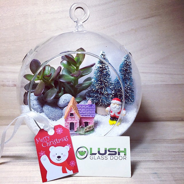 Customized Winter Land Themed Succulent Terrarium by Lush Glass Door Singapore