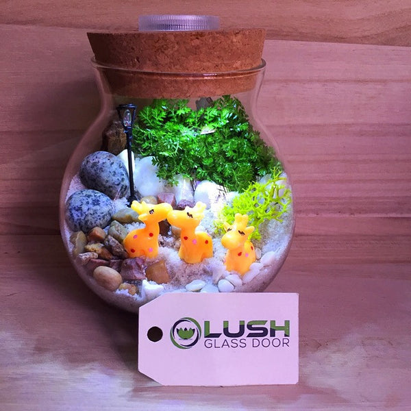 Customized Madagascar Themed Moss Terrarium with Light by Lush Glass Door Singapore