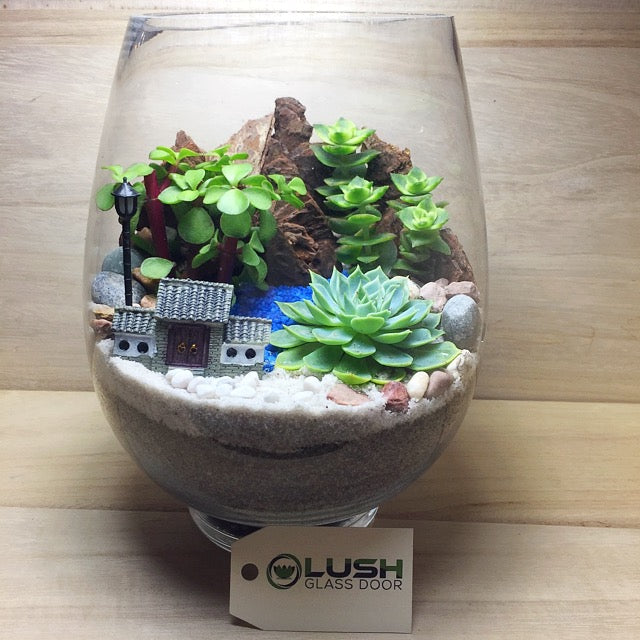 Customized Oasis Scenic Succulents Terrarium By Lush Glass Door