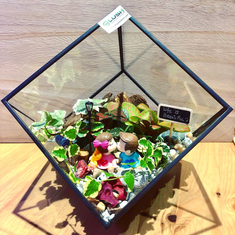 Customized Magical Garden Themed Tropical Fittonias & Ivy Square Geometric Terrarium by Lush Glass Door Singapore
