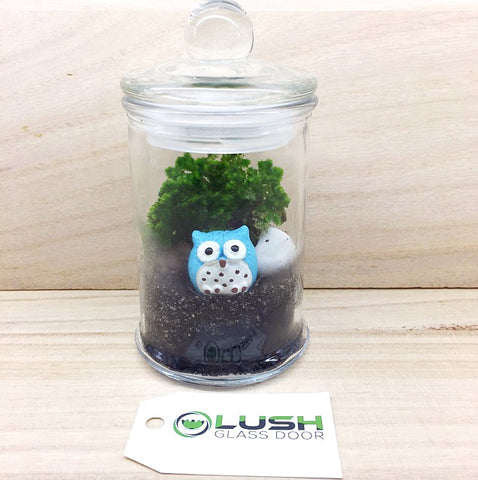 Customized Owlie Themed Moss Terrarium by Lush Glass Door Singapore