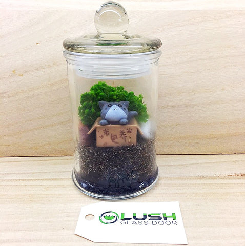 Customized Kitty in the Box Themed Moss Terrarium by Lush Glass Door Singapore