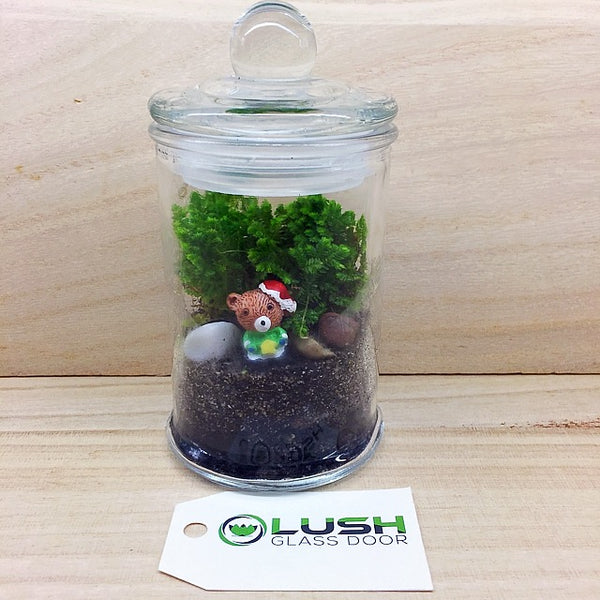 Customized Santa Bear Themed Moss Terrarium by Lush Glass Door Singapore