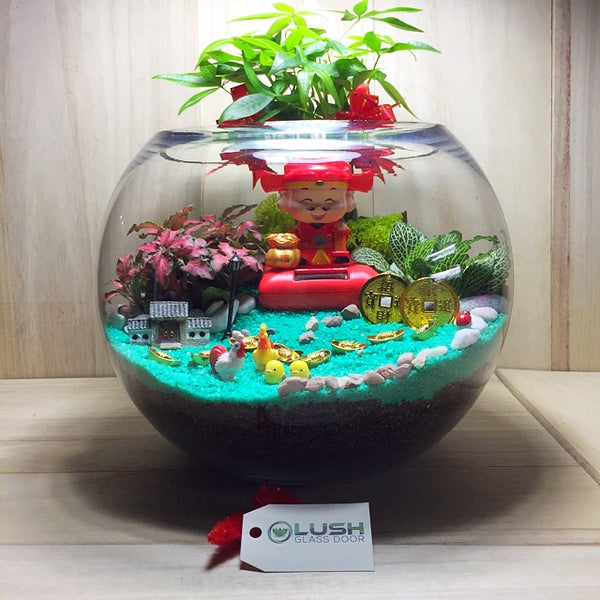 Customized Loris Auspicious Succulent Terrarium by Lush Glass Door Singapore