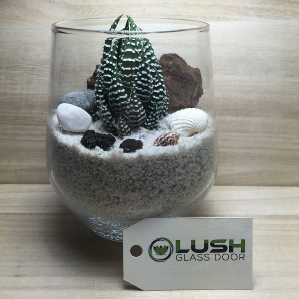 Customised Branson Zen Themed Succulent Terrarium by Lush Glass Door Singapore