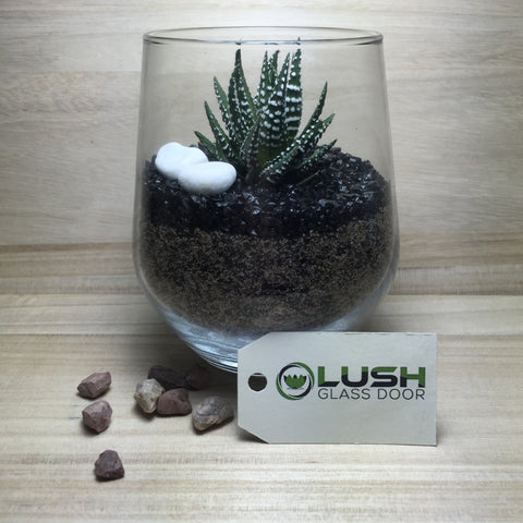 Customised Alonzo Zen Themed Succulent Terrarium by Lush Glass Door Singapore