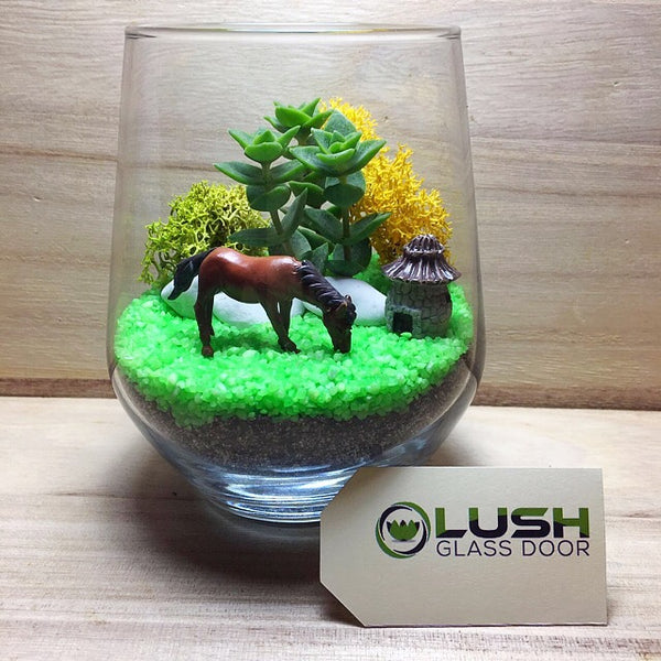 Succulent Terrarium DIY Kit by Lush Glass Door Singapore