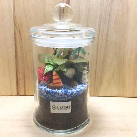 Customized Denver Fittonia Story Jar Terrarium by Lush Glass Door Singapore