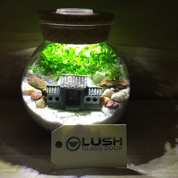 Customized Ancient Oriental House Themed Moss Terrarium with Light by Lush Glass Door Singapore