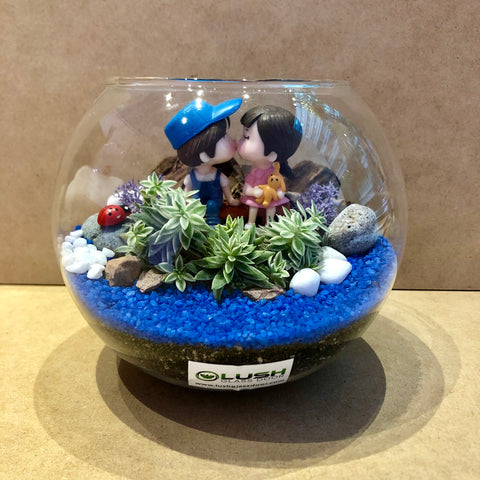 Customized Hendrix Couple Succulent Bowl Terrarium by Lush Glass Door Singapore