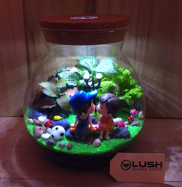 Customized You Complete Me Themed Fittonia Terrarium with Light by Lush Glass Door Singapore