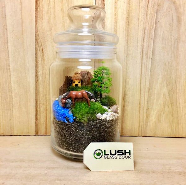 Customized Davida Holland Moss Story Jar Terrarium by Lush Glass Door Singapore