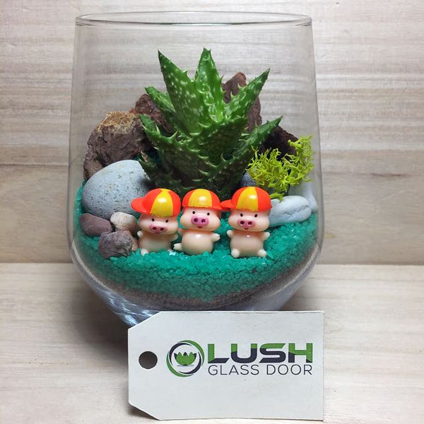 Customised Cute 3 Little Pigs Themed Succulents Terrarium by Lush Glass Door Singapore
