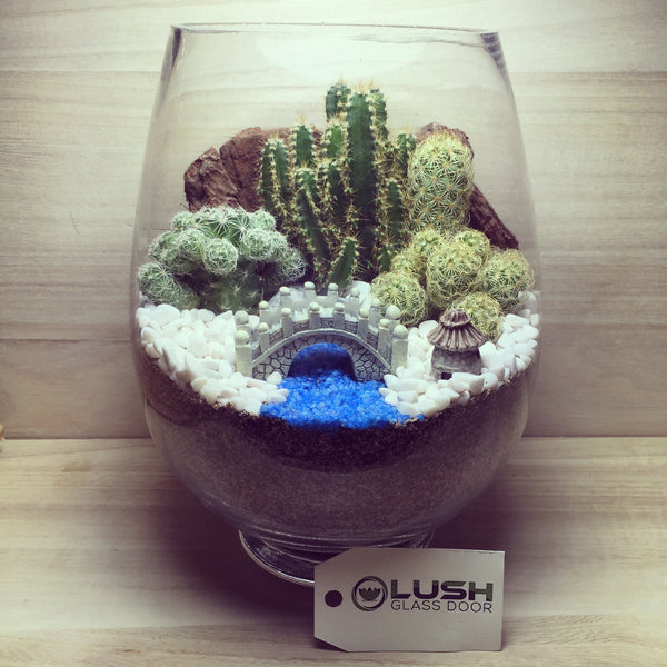 Customized By the River Scenic Succulents Terrarium by Lush Glass Door Singapore