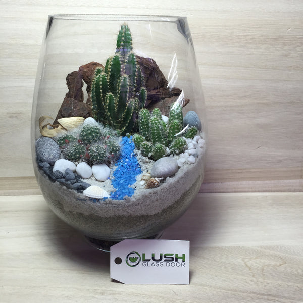 Customized Desert with River Scenic Succulents Terrarium by Lush Glass Door Singapore