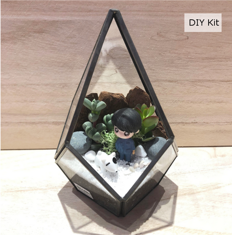 Succulent Teardrop Geometric Glass Terrarium DIY Kit