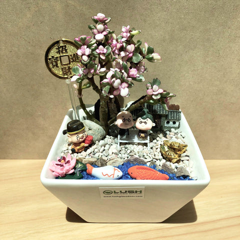 Customized Molly Prosperous Succulent in Ceramic Pot by Lush Glass Door Singapore