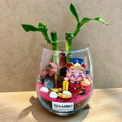 Customized Ellie Auspicious Lucky Bamboo Terrarium by Lush Glass Door Singapore