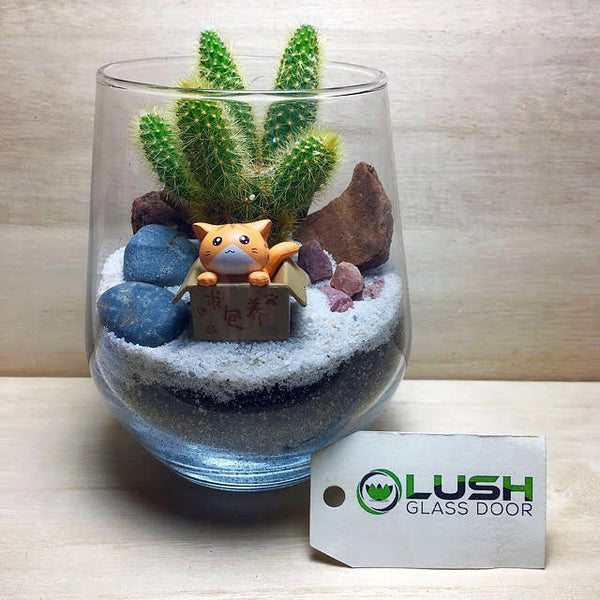 Customised Adorable Kitten in the Desert Themed Cactus Terrarium by Lush Glass Door Singapore